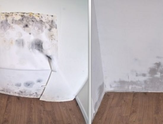 ALL US Mold Removal & Remediation Houston TX